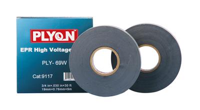 Plyon cinta